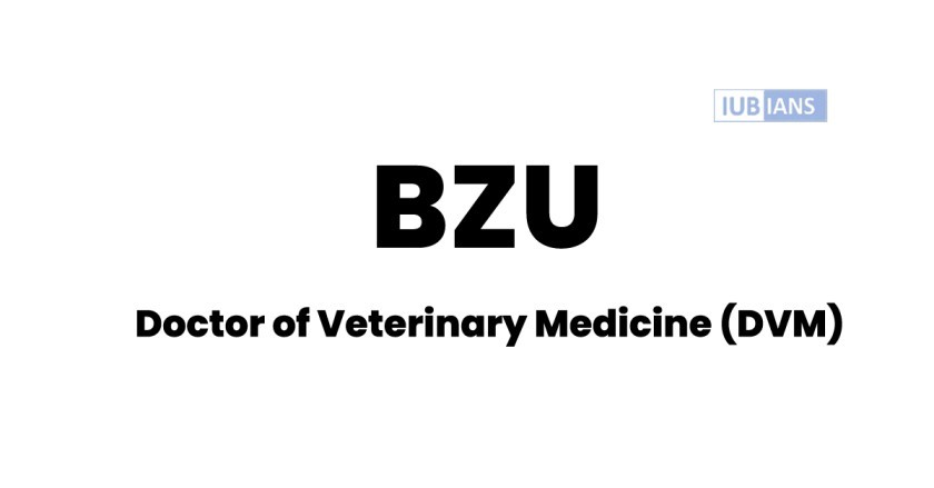 BZU DVM Admission Criteria , Merit Lists , Fee Structure and Subjects