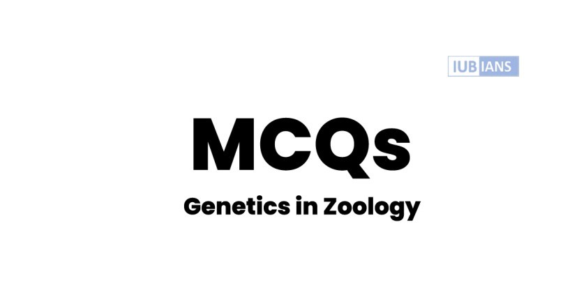 Solved MCQs of Genetics In Zoology for BS Program
